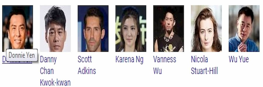 IP Man 4 release date cast